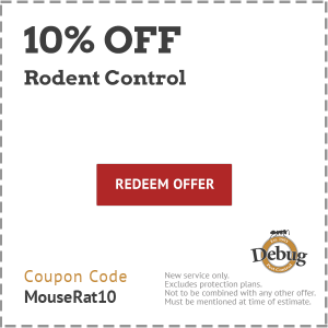 10 off rodent control
