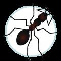 Icon Pest Control Ant